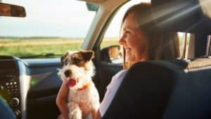 Young woman and her dog travelling together in a car